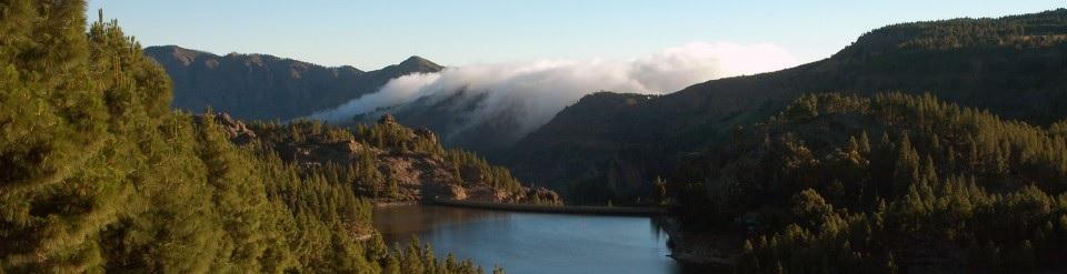 El patrimonio forestal, un patrimonio a conservar